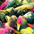 Artisteo uncoated RGB