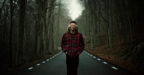 Ver el bosque
