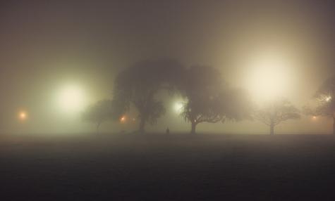 Fog you