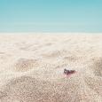 un-desierto-entre-las-dunas